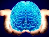 Επιστήμονες του Πανεπιστημίου Κρήτης δημιούργησαν συνθετική νευροτροφίνη (imerisia.gr)